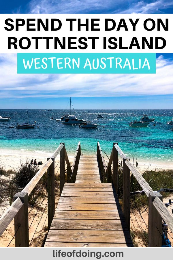 Spend the day at Rottnest Island, Western Australia. It's the perfect spot to swim, snorkel, or hang out at the beaches.