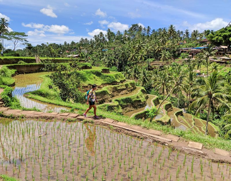 Jackie Szeto, Life Of Doing, walks along the dirt path with the Tegalalang Rice Terraces in the background in Bali, Indonesia.