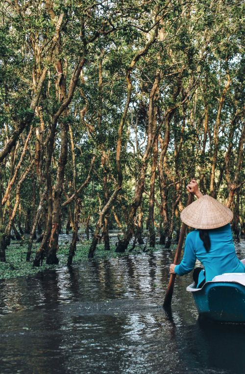 A woman in a blue Vietnamese outfit and wearing a conical hat row a boat through the Mekong Delta's forest area.