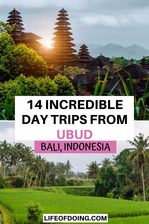 When going on day trips from Ubud, check out local attractions such as Besakih Temple, the holiest temple in Bali, and endless rice fields.
