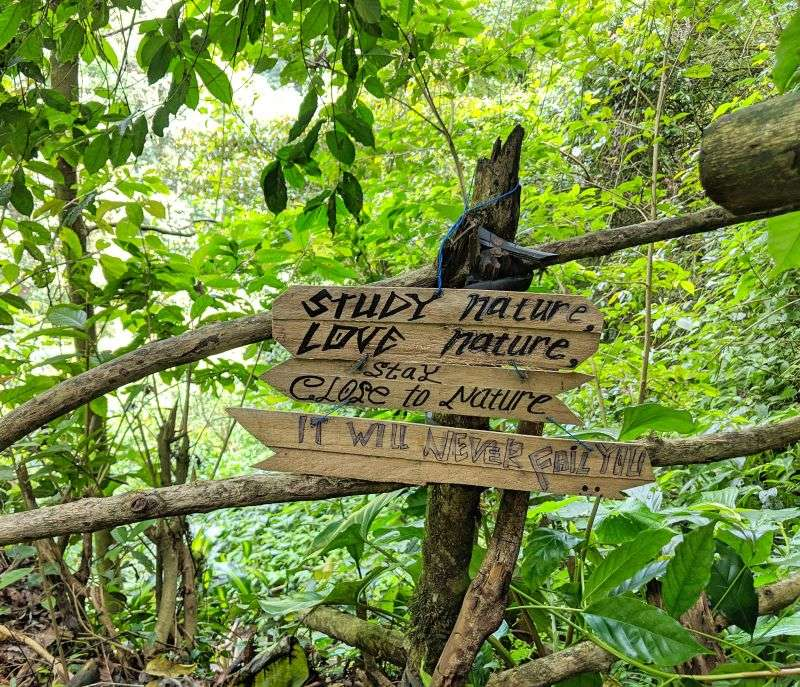 "Sign along the way to Banyumala Twin Waterfalls that says, ""Study nature, Love nature, Stay close to nature. It will never fail you."""