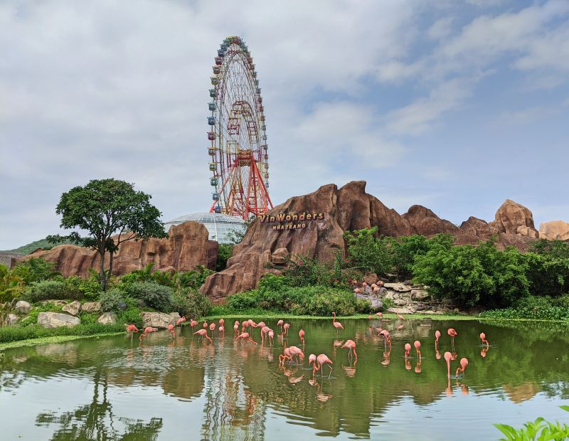 A lake with pink flamingos with the large red Ferris Wheel in the background of VinWonders Nha Trang