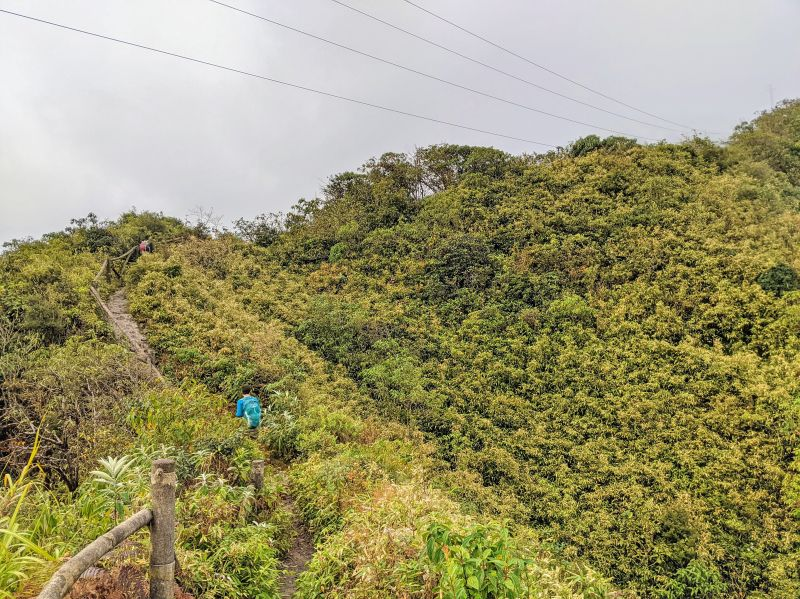 Jackie Szeto, Life Of Doing, walk along the hiking trail to Fansipan summit and is surrounded by green plants and trees.
