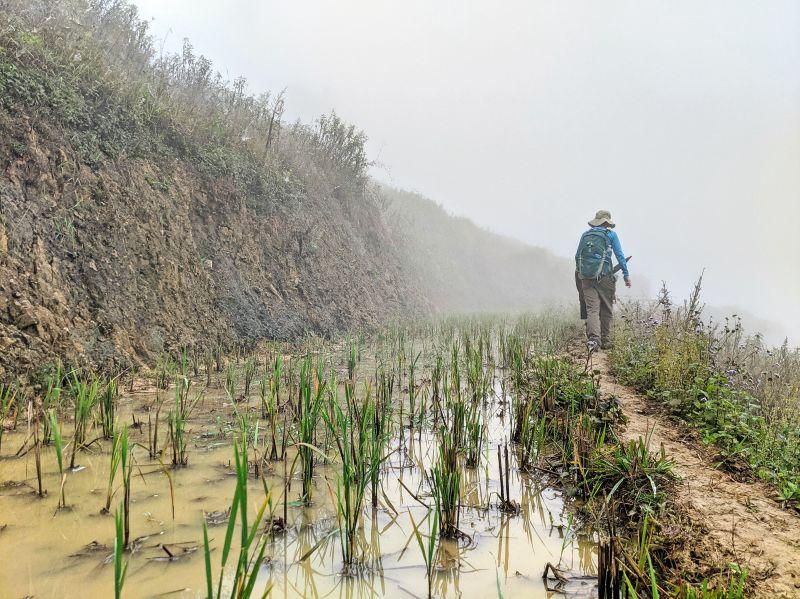 Jackie Szeto, Life Of Doing, walk along the narrow muddy path next to the rice fields in Sapa, Vietnam