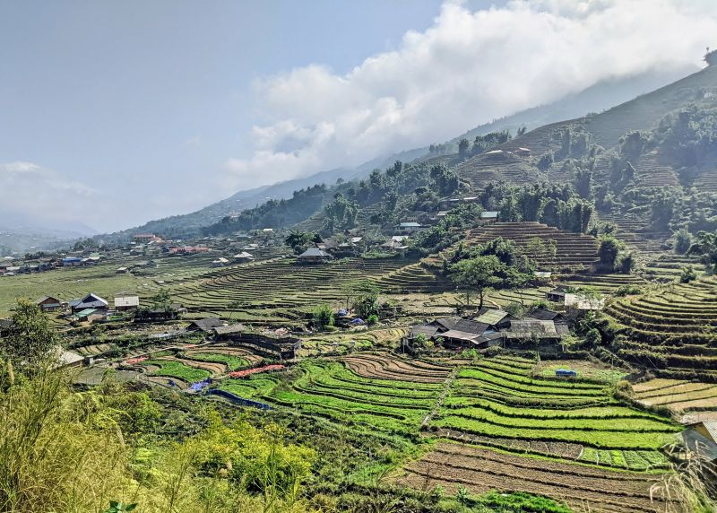 When trekking in Sapa in 2 days to Lao Chai and Ta Van villages, you'll see gorgeous green rice terraces and rice fields.