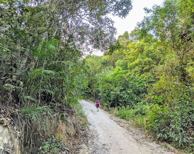 A woman in a red t-shirt walks up a steep dirt path of Nui Dinh Mountain hiking trail in Vietnam