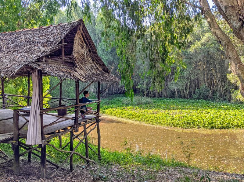 Jackie Szeto, Life Of Doing, sits under a wooden house with a view of the cajuput forest and river.