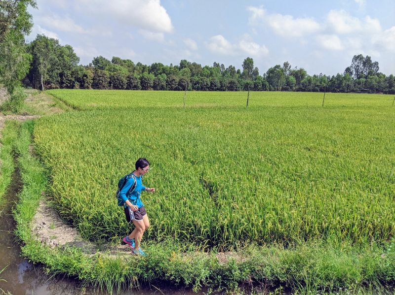 Jackie Szeto, Life Of Doing, runs next to the green rice fields of Tra Su Cajuput Forest in An Giang, Vietnam