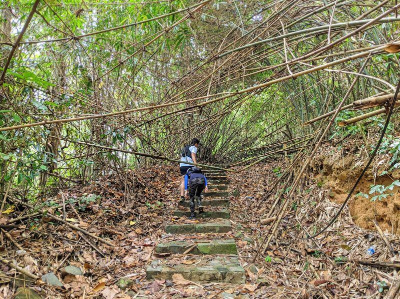 Two hikers crawl under a fallen bamboo along the Nui Ba Ra hiking trail in Binh Phuoc, Vietnam