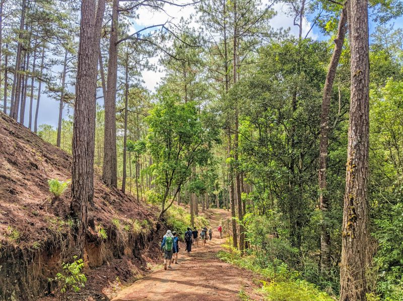 A group of hikers descends down a dirt path in a forest area to get to Tam Tham Waterfall in Dalat, Vietnam
