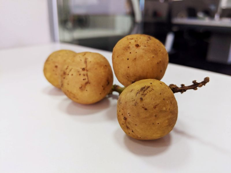 Small, round langsat fruit on a table