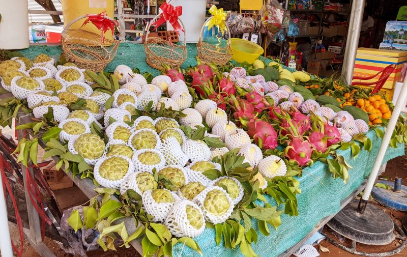 A local fruit stand display of sugar apple, dragon fruit, mangoes, and oranges in Vietnam.