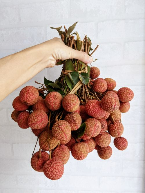 A hand holding a bouquet of red lychees