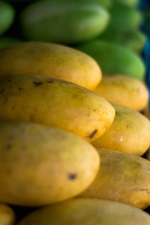 Yellow and green mangoes on display