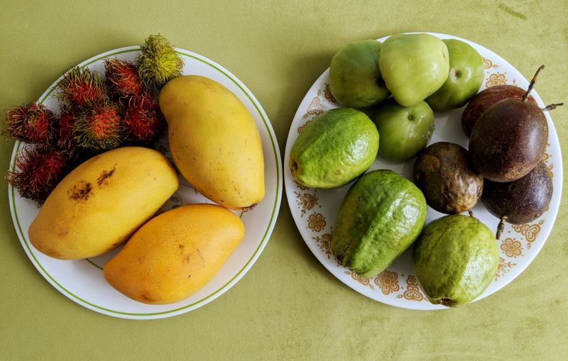 Two plates holding a variety of Vietnam tropical fruits such as mangoes, rambutan, guava, passion fruit, and water apple.